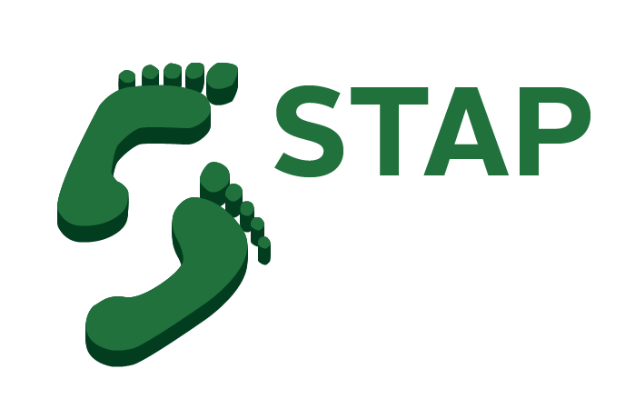 Stap for Koivijver bouwen stap voor stap